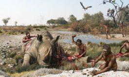 Sağlak Olmanın Evrimine Dair En Eski Fosil Kaydı