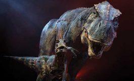 Baş Süsleri Dinozorların Devleşmesini Hızlandırmış Olabilir