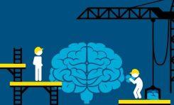Beyin Plastisitesi Nedir ve Neden Çok Önemlidir?