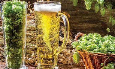Bira Tüketimi, Karaciğer İçin Daha İyi Bir Seçim Olabilir Mi?
