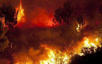 Buz Devri Avcılarının Sebep Olduğu Orman Yangınları