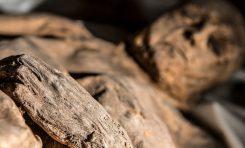 Çocuk Mumyada Bulunan Kızamık Virüsü ve Hastalığın Ortaya Çıkışı