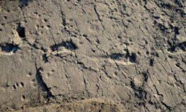 En Uzun Atalarımızdan Birisine Ait, 3.7 Milyon Yıllık Ayak İzi Fosili Bulundu