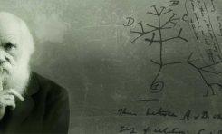 Genişletilmiş Evrimsel Sentez: Evrim Mekanizmaları Güncellenmeli mi?