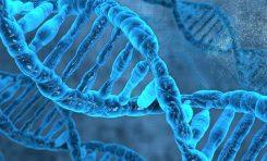 Kişilik Özellikleri ile Psikiyatrik Hastalıklar Arasında Genetik İlişki Bulundu