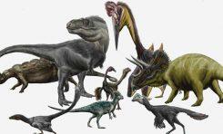 Neden Çok Fazla Dinozor Türü Vardı?