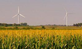 Rüzgar Türbinleri Ekinlerin Büyümesini Olumlu Etkiliyor Olabilir