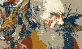 Evrim Teorisi Yeniden Değerlendirilmeli mi?