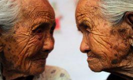 Genetik ve Çevre, Beynin Dil Aktivitesini Eşit Düzeyde Etkiliyor