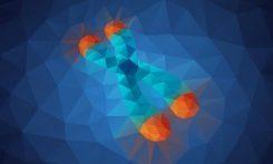 Telomer Nedir?