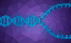 DNA Eşlenmesi Nedir?