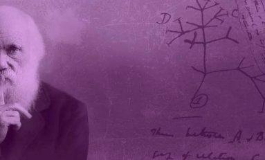 """""""Evrimin Işığı Olmaksızın, Biyolojide Hiçbir Şeyin Anlamı Yoktur."""""""