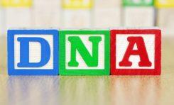 DNA Dizileme Nedir?