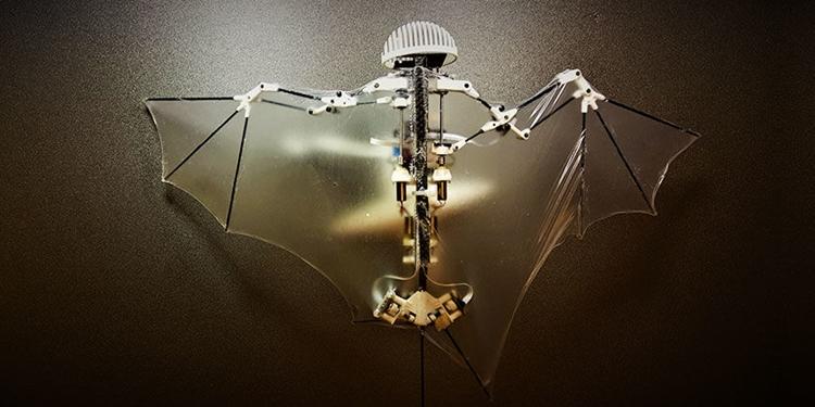 Yarasa Gibi Uçan Biyo-Taklitçi Robot