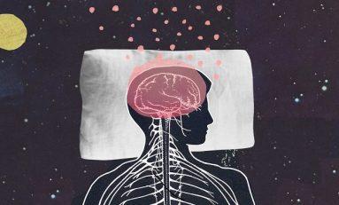 Uyku Esnasında Beyin Kendini Nasıl Yeniler?