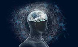 Beyin Bilinci Nasıl Oluşturur?