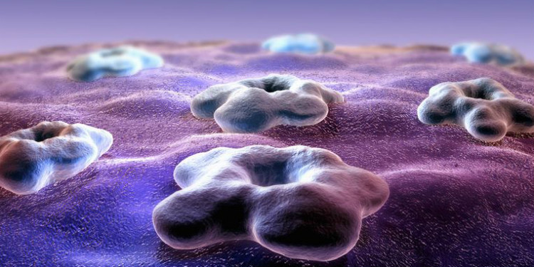 Hücrelerin İletişimlerini Taklit Eden Yapay Reseptör Geliştirildi