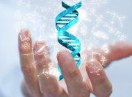 DNA'dan Üretilen Çift Sarmal Kristaller