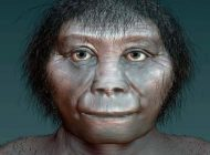 """Endonezya """"Hobbitlerinin"""" Evrimsel Kökeni Ortaya Çıkarıldı"""