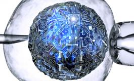 İnsan Böbreği Hücresi Bilgisayara Dönüştürüldü
