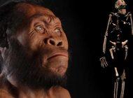 Homo naledi 250.000 Yıl Önce Yaşamış Olabilir ve Peki Bu Ne Anlama Gelir?