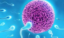 Kısırlık (İnfertilite) ve Tedavisinin Psikolojik Etkileri