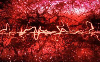 Kuantum Faz Geçişleri, Entropideki Artış ile Önceden Tahmin Edilebilir
