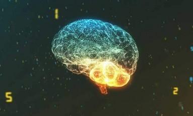 Beynimiz Tamamen Dolabilir mi?