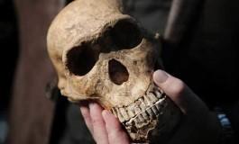 Fas'taki Erken İnsan Fosilleri 300.000 Yaşında