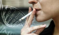 Sigara İçmenin Vücuda Zararı DNA'ya Kadar Uzanıyor