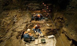 Denisova İnsanına Ait Dördüncü Bir Fosil Bulundu