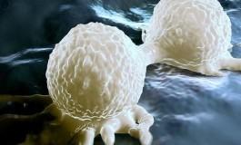 Kanser Hücreleri, Sağlıklı Hücreleri Sahte Virüs Üretmeye Nasıl Zorluyor?