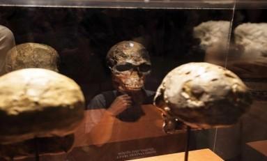 Modern İnsanın Atası, Neandertallerle 219.000 Yıl Önce Çiftleşmiş Olabilir