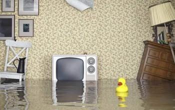Sel Baskınlarının Sebepleri Nelerdir? Önlem İçin Neler Yapmalıyız?