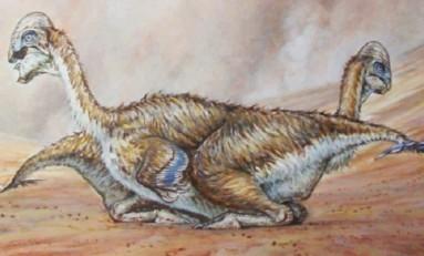 Yeni Keşfedilen Dinozor Türü, Modern Kuşlar Gibi Tünüyordu