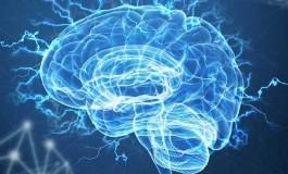 Biyolojik Saati Kontrol Eden Nöronlar Belirlendi
