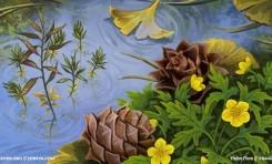 Bitki Evrimi 4/5: Çiçeklerin ve Tohumların Öyküsü