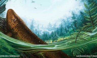 Bitki Evrimi 2/5: Ormanların Doğuşu