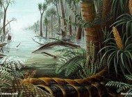 Bitki Evrimi 3/5: Kömür Çağı