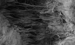 Sürtünme Yoluyla Elektriklenmenin Perde Arkası