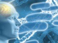 Mikroplar Alzheimer Hastalığını Tetikliyor Olabilir mi?
