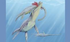 Deniz Sürüngenlerinin Tarihi