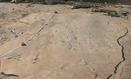 Girit`teki Fosilleşmiş Ayak İzleri, İnsan Evrimine Dair Bildiklerimizi Değiştirebilir