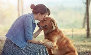 Neden Bazı İnsanlar Hayvanları Daha Çok Sever?