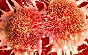 Bir Hücrenin Kanser Hücresine Dönüşmesi İçin Kaç Mutasyona İhtiyaç Var?