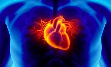 Kalp Tanıma Sistemi Yeni Güvenlik Aracımız Olabilir