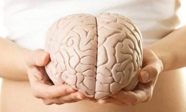 Menstrüasyon ve Beyin Arasındaki Karmaşık İlişki