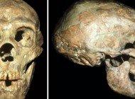 Shanidar 1 Neandertali İşitme Kaybı ile Nasıl Yaşadı?