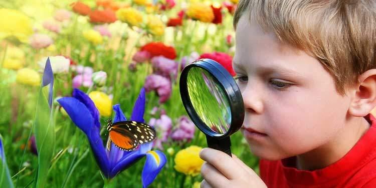 Yeşil Alanlarda Yaşamak Çocuklarda Dikkati Artırıyor