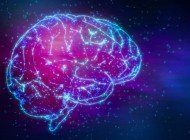Bilinç, İnsan Zihnini Yönlendirmiyor Olabilir mi?